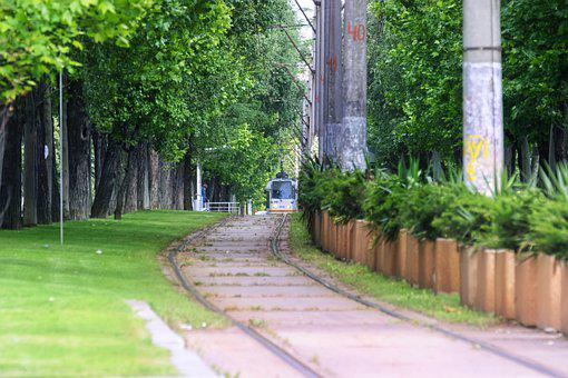 Tram Lines, Trees, Fast, Green, America, Grass