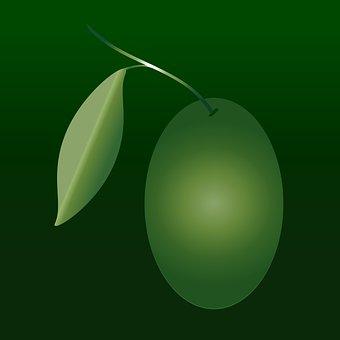 Oliva, Oil, Olive Grove, Green