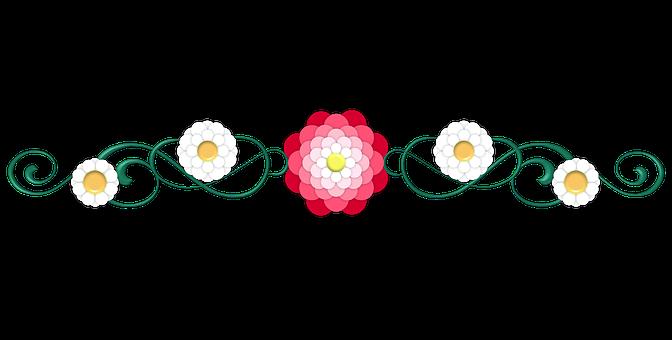 Divider, Flower, Pink, Petal, Petals, Petaled, White