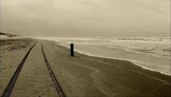 Beach, Sand Beach, Sea, Sand, Coast, Tire Tracks