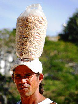 Peddling, Man, Head, Fruit, Brazil