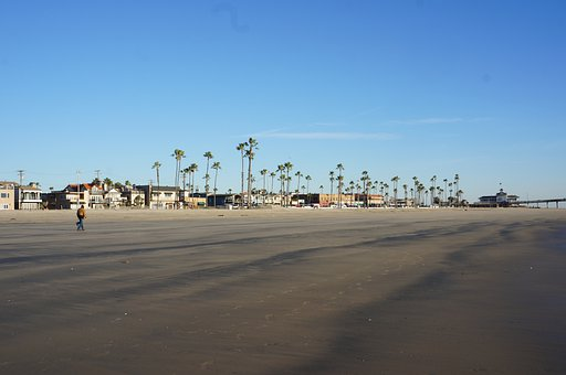 Palm Trees, California, Tire Tracks, Usa, Shore, Ocean