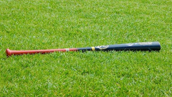 Baseball, Baseball Bat, Sport, Prato, Grass, Green