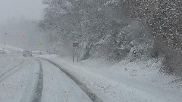 Tire Tracks, Winter, Traffic, Road, Snow, Rain, Tree