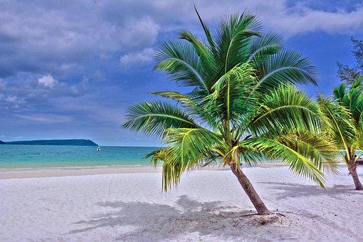 Ocean, Koh Rong, Cambodia, Sunny, Sun, Holiday, Tree