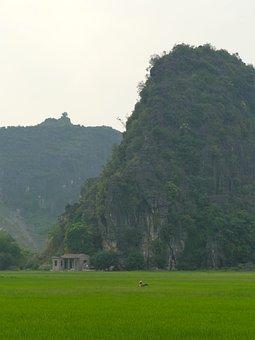 Ninh Binh, Vietnam, Tourism, Outdoor, Mountain