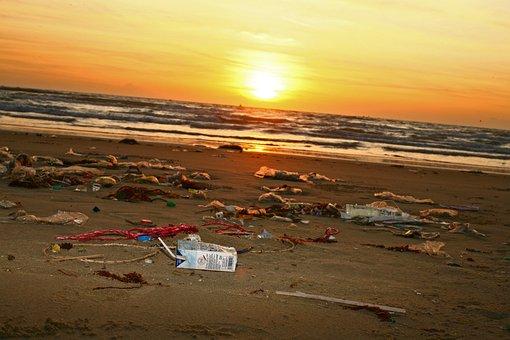 Trash, Pollution, Beach, Ocean, Plastic, Straws