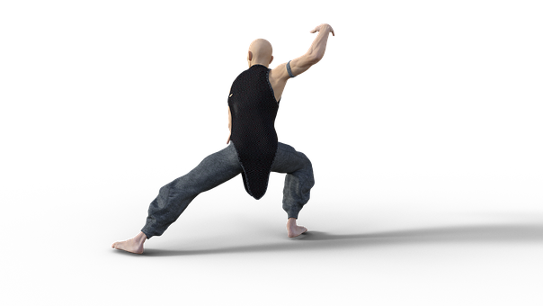Kung Fu, Martial, Arts, Pose, Fighter, Sport, Tai Chi