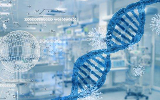 Research, Virus, Corona, Coronavirus, Dna, Medical