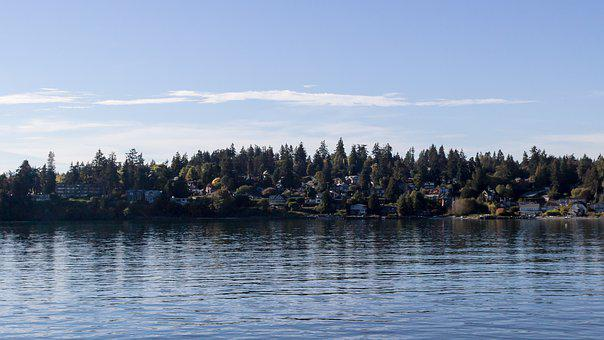 Seattle, Washington, Bay, Water, Tourism, Sky, Scenic