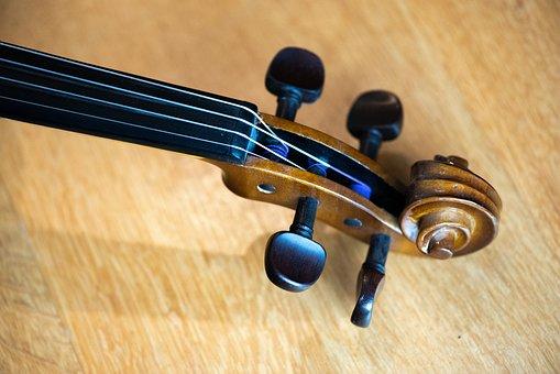 Macro, Violin, Scroll, Pegbox, Tuning