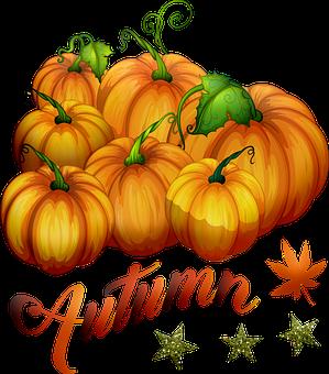 Autumn Pumpkins, Pumpkin, Halloween, Vegetables