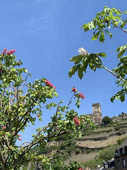 Rhine, Romance Of The Rhine, Gutenberg
