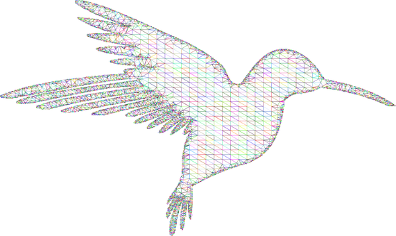 Hummingbird, Low Poly, Wireframe, Line Art, Abstract