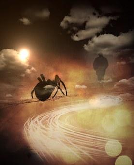 Web, Spider, Man, Shadow, Fog, Clouds, Sun, Light, Away