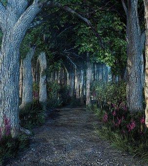 Forest, Light, Landscape, Fantasy, Place, Tree, Nature
