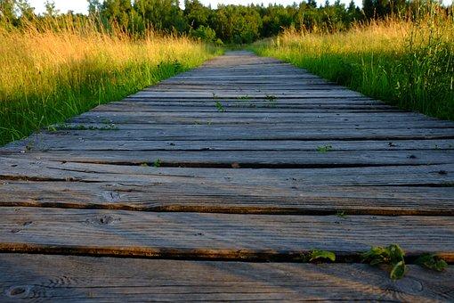 Wood, Boards, Board, Grain, Bohlen, Weathered