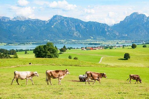 Allgäu, Ostallgäu, Bavaria, Mountains, Mountain Range