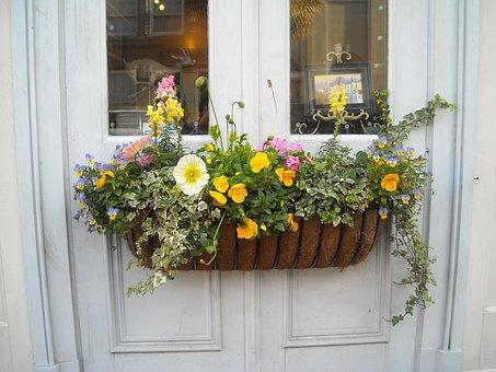 Window Box, Flowers, Window, Box, House, Architecture