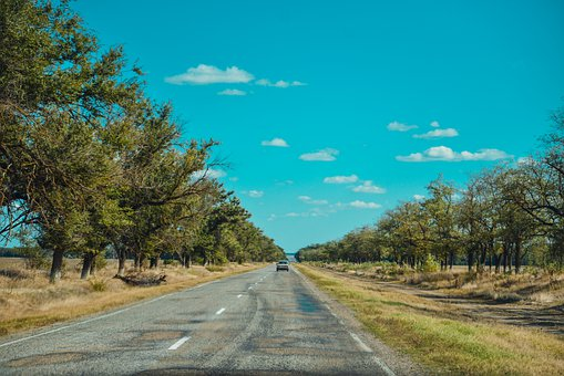 Long Road, Track, Hot, Summer, Trees, The Way