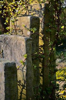 Grave Stones, Stone Slabs, Old Cemetery, Wild, Haunting