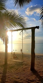 Swing, Beach, Sun, Palm Trees, Sand, Fun, Travel