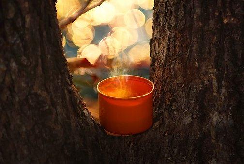Coffee, Mug, Cup Of Coffee, Morning, Warm, Cup, Tea
