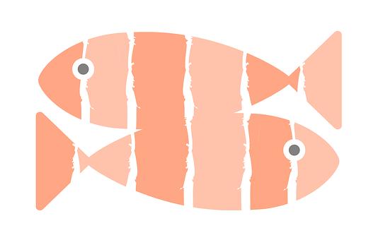 Salmon, Sushi, Fish, Cool, Restaurant, Kitchen