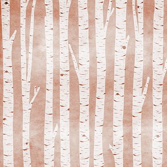 Birch Tree Digital Paper, Wood And Beach