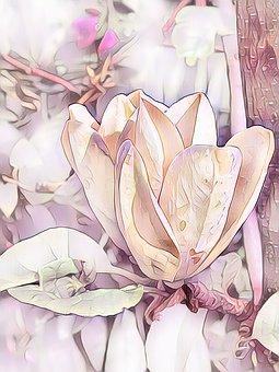Magnolia, Digital Painting, Pastel, Tulips Magolie