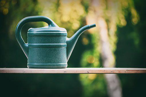 Watering Can, Gardening, Flowers, Nature, Summer
