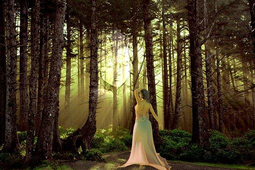 Forest, Trail, Via, Spirit, Nature