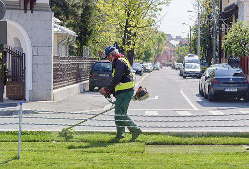 Man, Worker, Suit, Protection, Mowing, Grass, Turf, Car