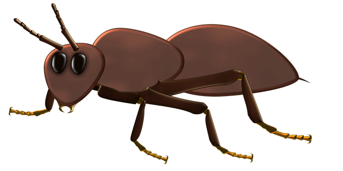 Ant, Bug, Insect, Brown, Creature, Small, Black, Design