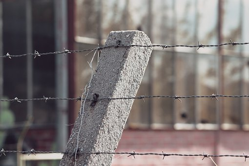 Barbed Wire, Barbed Wire Fence, Post, Prison, Barrier