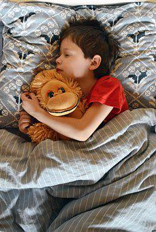 Dream, Baby, Boy, Sleeping With A Toy, Vacation, Kids