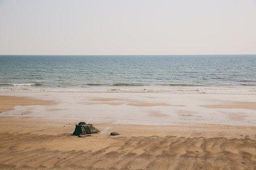 Marine, Shell, Stone, The Sea, Film, Style