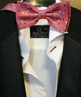 Bow, Suit, Male, Person, Elegant, Fashion, Tie, Man