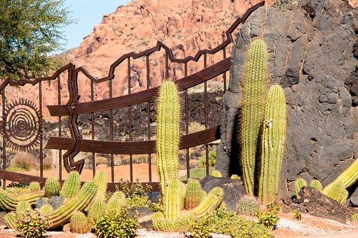 Cactus Garden, Gate, Utah, St George, Desert, Sandstone