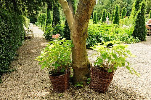 Garden, Style, 17th Century, Design, Residence, Vintage