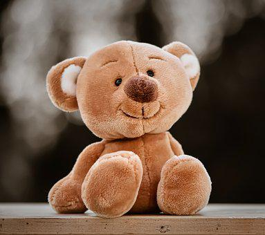 Teddy, Stuffed Animal, Funny, Toys, Teddy Bear
