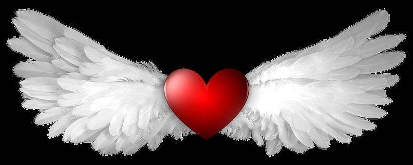 Heart, Wing, Wings, Winged, Shape, Heaven, Heavenly