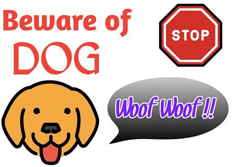Beware Of Dog, Dogs, Beware, Husky, Pooch, Puppy, Fence