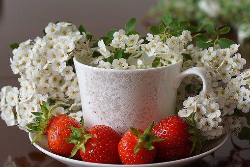 Strawberry Ripe, Red, White Flower Cherry