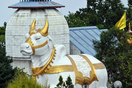 Lord, Art, Painting, Nature, Temple, Shiva