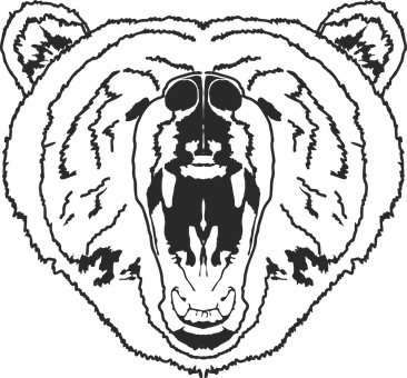 Bear, Outline, Bear Face, Mascot, Animal, Grizzly