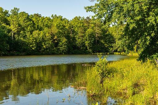 Preserve Lake, Conservation Area, May Lake, Sunny Lake