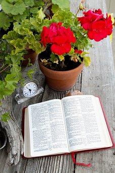Bible, Open Book, Open Bible, Religion, Christian