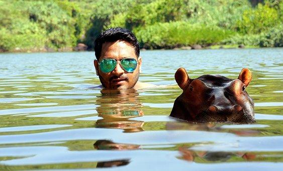 Water, Glasses, According To, The Swimmer, Swim
