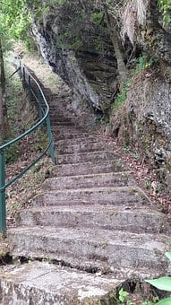 Stairs, Stones, Forest, Railing, Root, Ground, Path